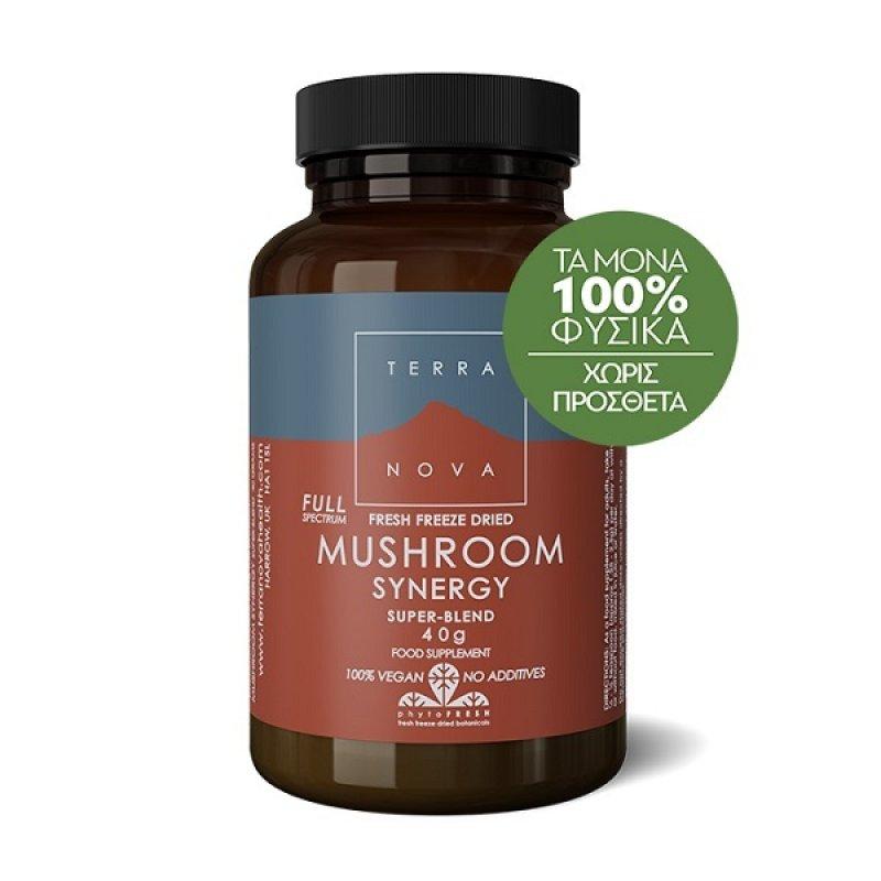 TERRANOVA Mushroom Synergy Super Blend 40gr